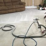 Why You Should Have Your Carpets Cleaned Regularly